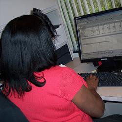Picture of an employee working at their desk in front of a computer.